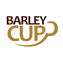 Barley Cup  Gluten free instant drinks