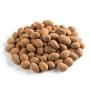 Organic Raw Chocolate Almonds - Bulk