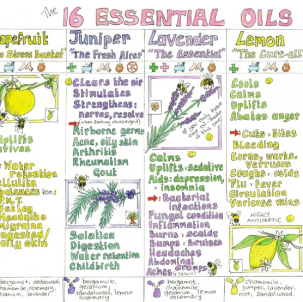 Essential Oils For Home Use Chart