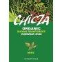 Organic Mint Chewing Gum