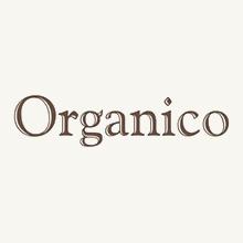 Organico Olives in jars
