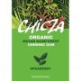 Organic Spearmint Chewing Gum